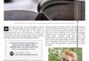 Theresa Schuck | Katalogprofil